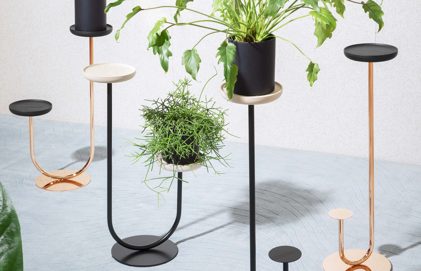 Cigales-plant-floor-stand-LS01